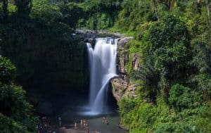 Bali Kintamani and Tegenungan Waterfall Tour -LTP Image 160119