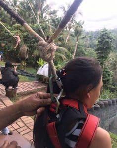 Bali Swing 1301195