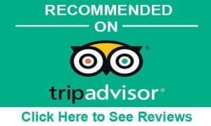 Bali Booking Tour - TripAdvisor Recommended