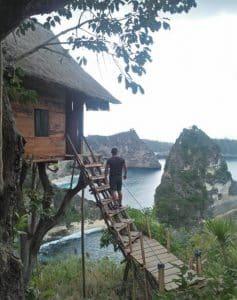 Nusa Penida Tour - Tree House 01