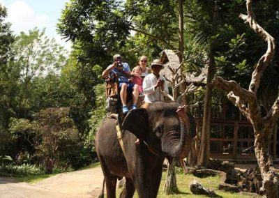 Bali Elephant Camp Tour - Galerry 0907201913