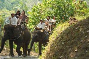 Bali Elephant Camp Tour - Gallery 090720191