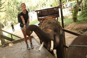 Bali Elephant Camp Tour - Gallery 0907201911