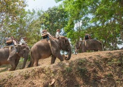 Bali Elephant Camp Tour - Gallery 0907201917