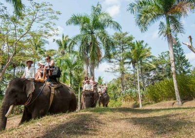 Bali Elephant Camp Tour - Gallery 0907201919
