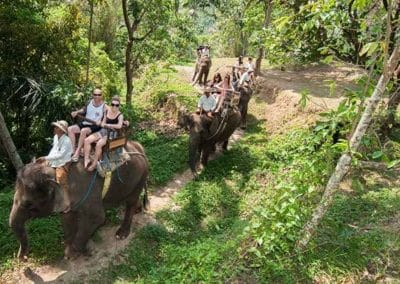 Bali Elephant Camp Tour - Gallery 0907201920