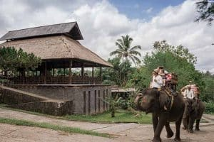 Bali Elephant Camp Tour - Gallery 090720193