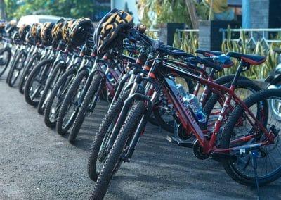 Bali Ubud Bike Tour -Gallery 030720191