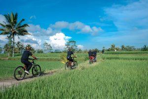 Bali Ubud Bike Tour -Gallery 03072019131