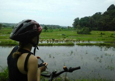 Bali Ubud Bike Tour -Gallery 0307201914