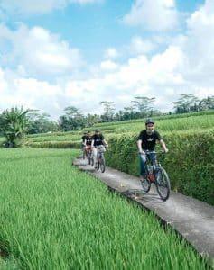 Bali Ubud Bike Tour -Gallery 030720194