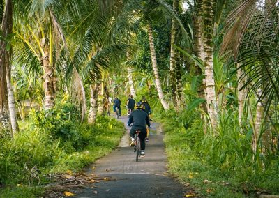 Bali Ubud Bike Tour -Gallery 030720196