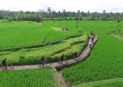 Bali Ubud Bike Tour -Gallery 030720199