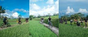 Bali Ubud Bike Tour