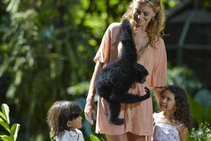Bali Zoo Animal Encounter With Siamang Gibbon