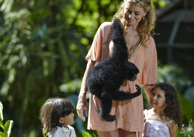Bali Zoo Animal Encounter With Siamang Gibbon