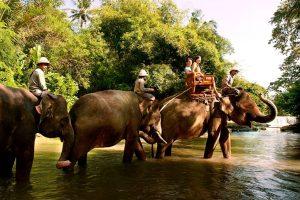 Bali Zoo Elephant Safari Ride Tour - Galerry 120720191
