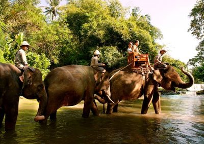 Bali Zoo Elephant Safari Ride Tour - Galerry 120720191
