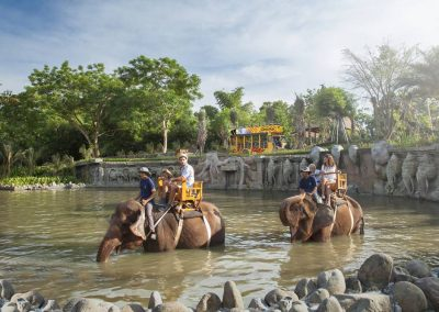 Bali Zoo Elephant Safari Ride Tour - Galerry 120720192