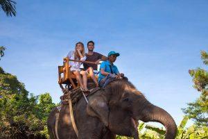 Bali Zoo Elephant Safari Ride Tour - Galerry 120720194