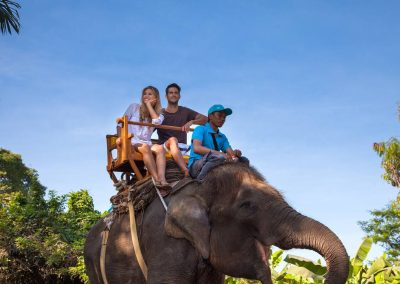 Bali Zoo Elephant Safari Ride Tour - Galerry 120720194