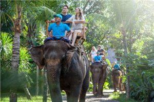 Bali Zoo Elephant Safari Ride Tour - Galerry 120720195