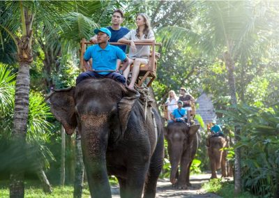 Bali Zoo Elephant Safari Ride Tour - Galerry 120720195