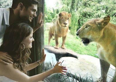 Bali Zoo Wana Restaurant 03
