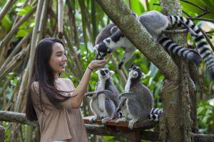 Fun at Bali Zoo
