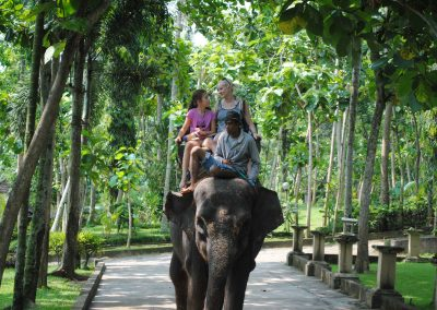 Bali Bakas Elephant Ride Tour - Gallery 1208191