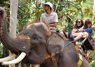 Bali Bakas Elephant Ride Tour - Gallery 12081913