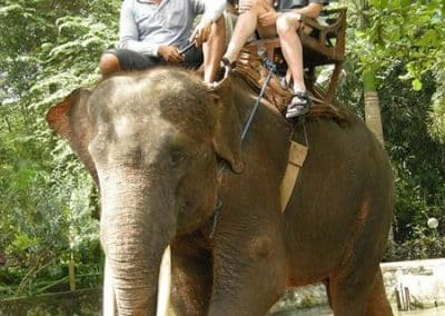 Bali Bakas Elephant Ride Tour - Gallery 12081916