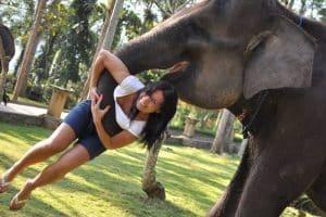 Bali Bakas Elephant Ride Tour - Gallery 1208192