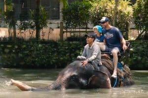 Bali Bakas Elephant Ride Tour - Gallery 1208196