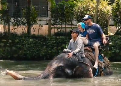 Bali Bakas Elephant Ride Tour - Gallery 1208196