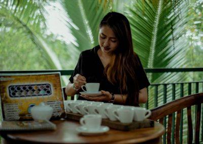 Bali Ubud Swing Tour - Gallery 1009201912