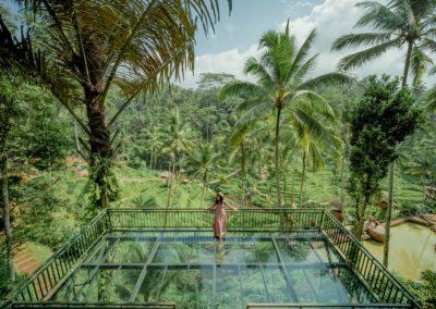 Bali Ubud Swing Tour - Gallery 1009201915