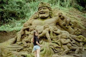 Bali Ubud Swing Tour - Gallery 1009201917