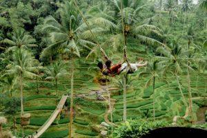 Bali Ubud Swing Tour - Gallery 100920197